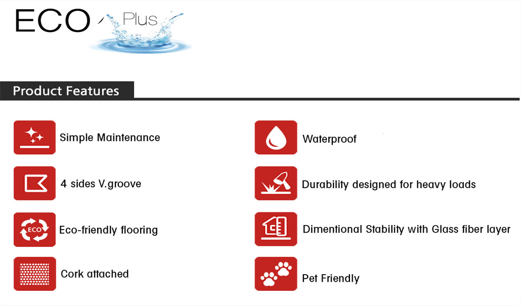 ~Eco Plus Features